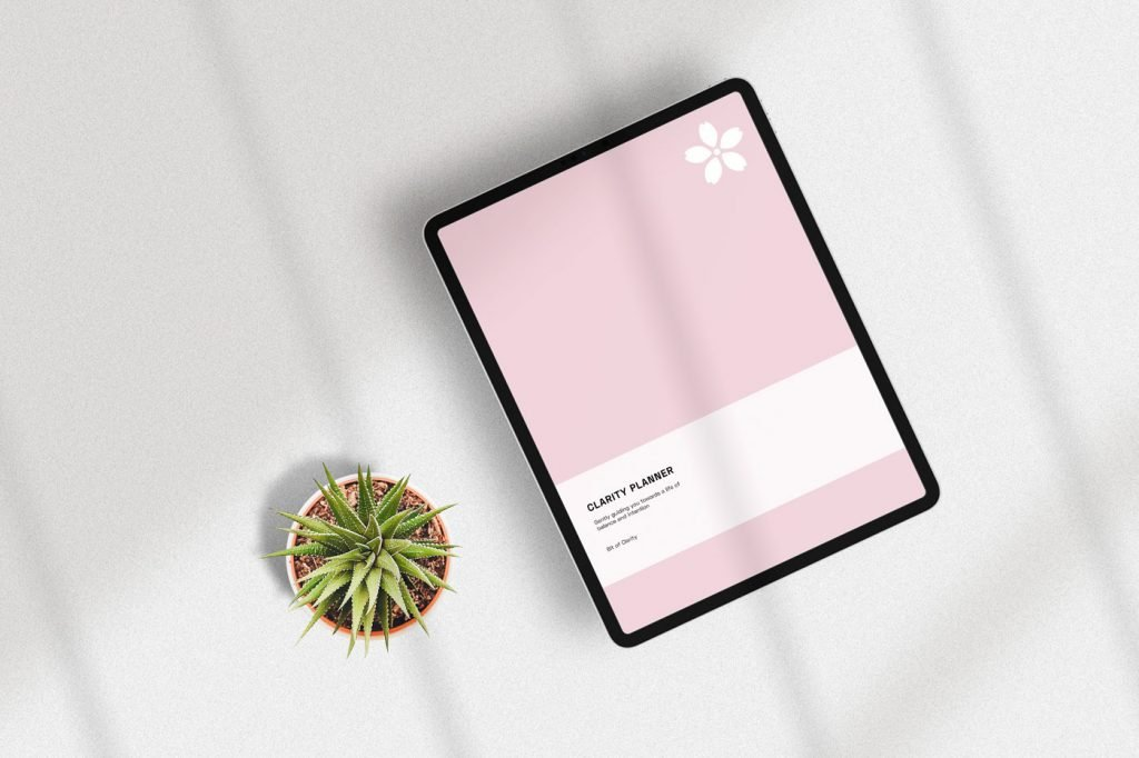 pink clarity planner in application